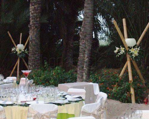 bambu-floristas-40791.jpg